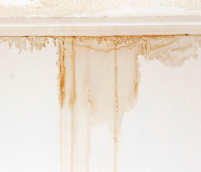 Water Damage Eagle Rock Water Damage - Repairing Water Damage in Eagle Rock