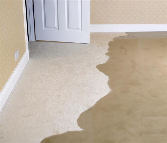 Water Damage Residential Water Removal in Glendale