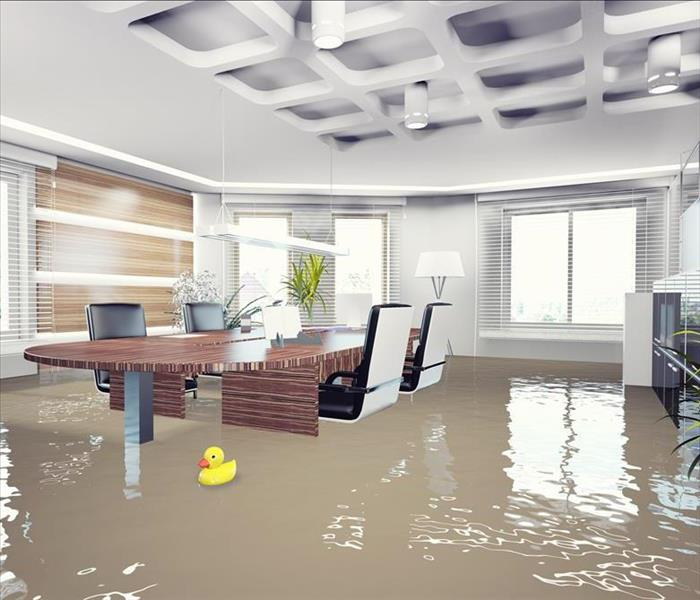 Commercial Commercial Water Damage Restoration for a Los Angeles Business