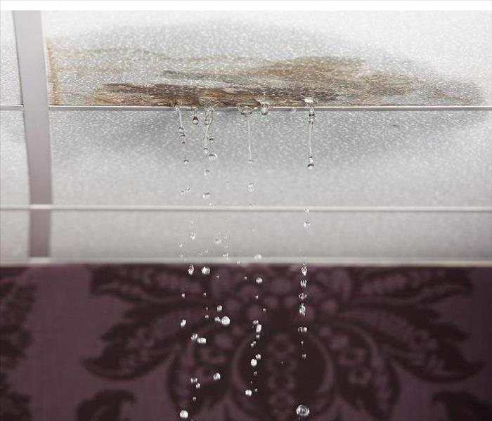 Water Damage Weakened Materials in a Home are Classic Signs of Water Damage in Glendale