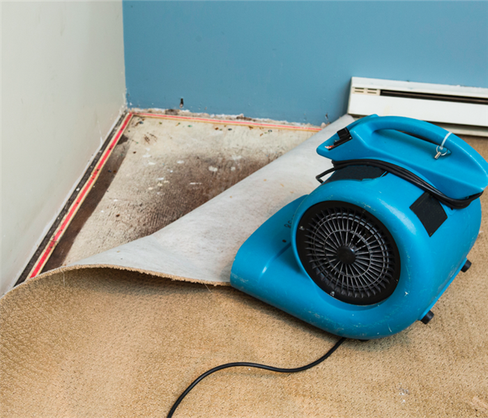 Water Damage Don't Let Water Damage in Your Glendale Home Slow Your Life Down