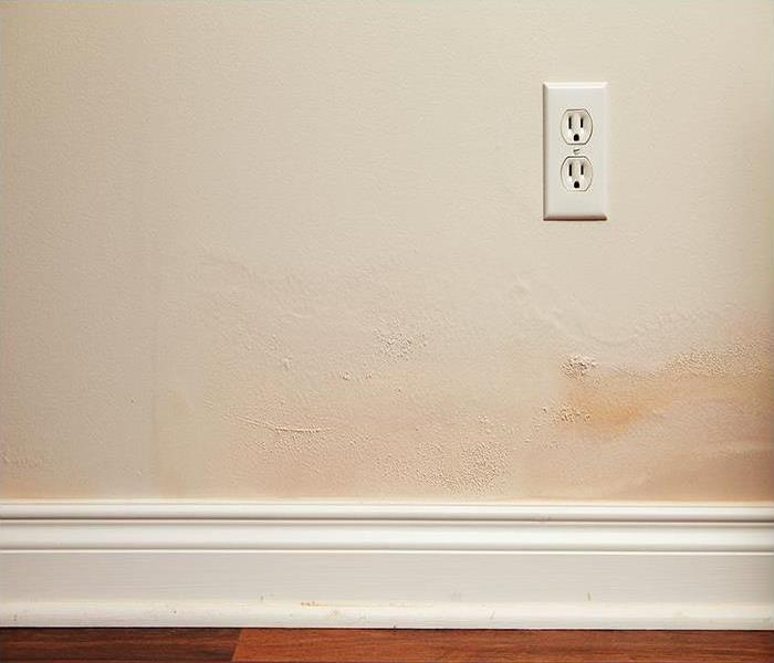 Water Damage When Water Damage Happens Inside Your Glendale Residence