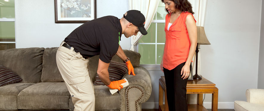 Eagle Rock, CA carpet upholstery cleaning